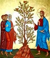 Granos de mostaza y la fe